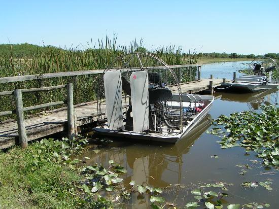 Billie Swamp Safari: Airboat