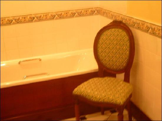 Barberstown Castle: Bathroom again