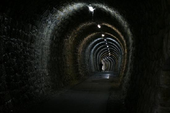Izola, Slovenia: Old steam tunnel, now footpath