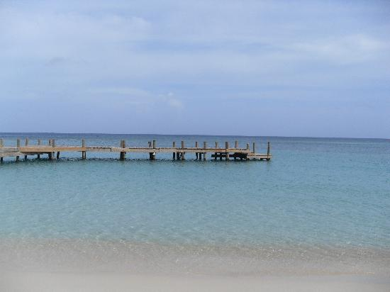 West Bay B & B : water taxi dock, located on beach for easy travel to West End Village