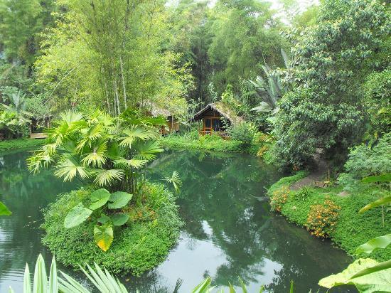 Mindo Lago: las cabañas rodeadas del lago
