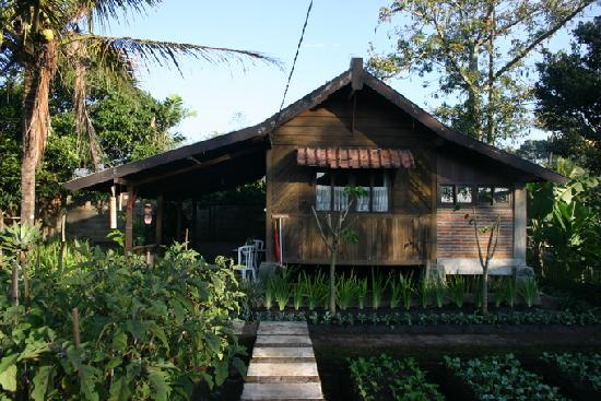 de Daunan Home and Garden Guest House: Village hut