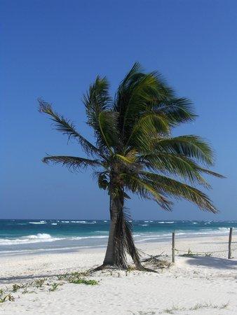 Retiro Maya Villas: beach in front of house