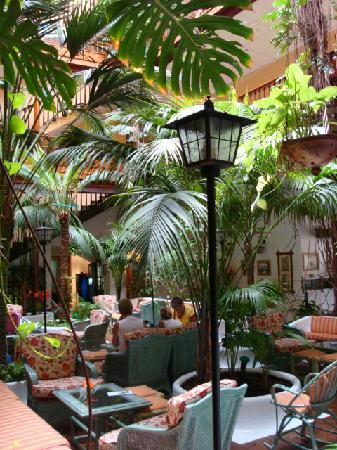 Hotel Monopol: Lushious plants