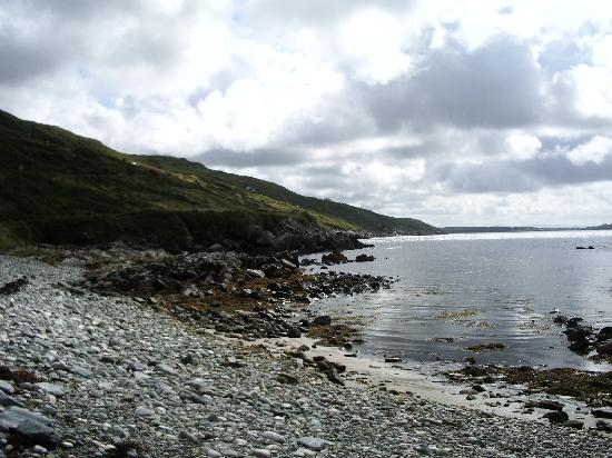 Dolphin Beach House: Petite plage de galet au bout du jardin