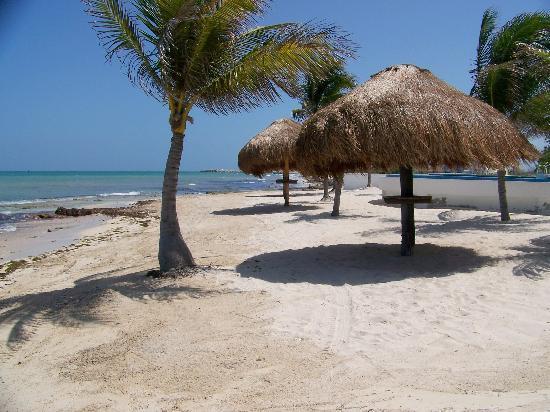 Caribbean Reef Villas : beach