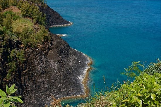 Kilauea Point National Wildlife Refuge