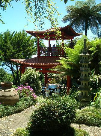 Jardin oriental et lac aux poissons ko picture of monte for Jardin oriental