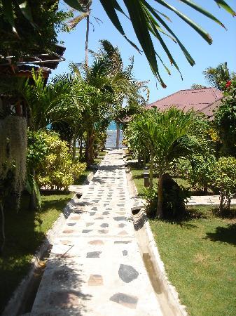 Neptune's Villa: pathway to huts
