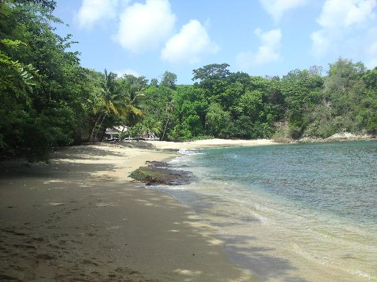 Top O' Tobago Villa & Cabanas: closest beach with great snorkling