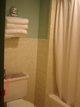 Alpine Valley Resort : Small bathroom
