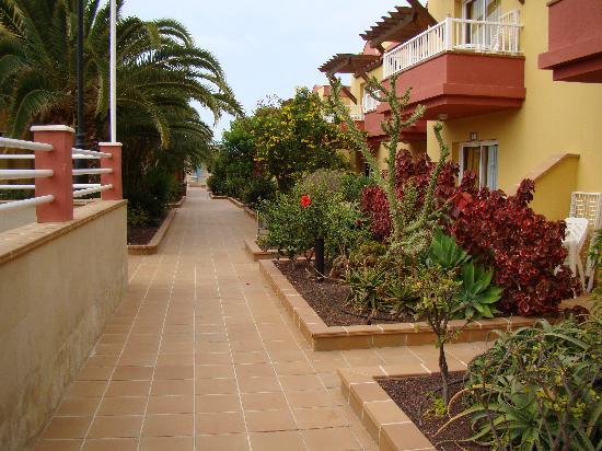 Lobosol Paradise Apartments: Jardines del hotel