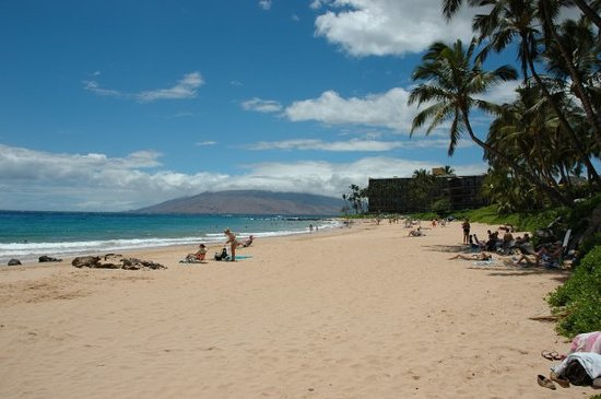 Wailea Beach Picture