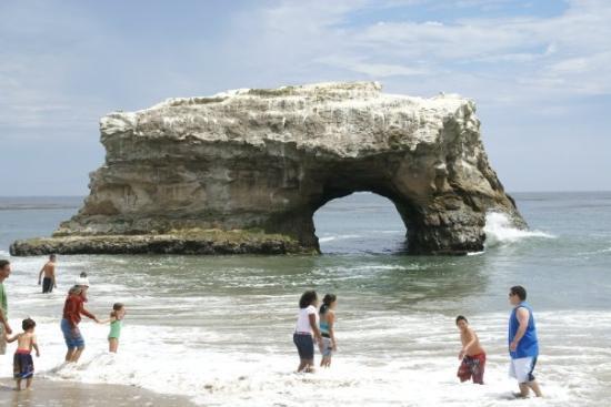 Natural Bridges State Beach Image