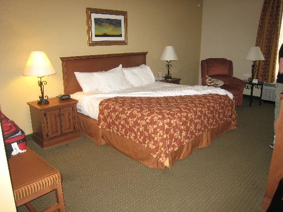 Drury Inn & Suites Las Cruces: king room