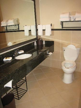 Drury Inn & Suites Las Cruces: clean and updated bathroom