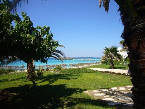 Nissi Beach Resort: Le jardin de l'hôtel