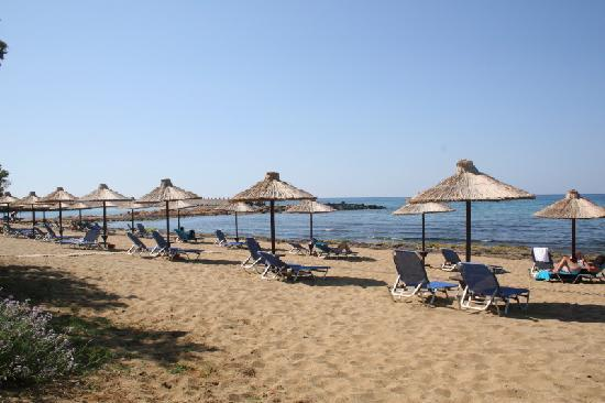 Cretan Malia Park: Der hoteleigene Strand.