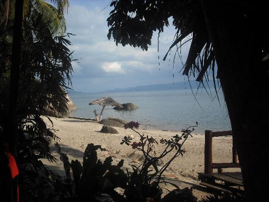 Harmony Beach Resort: view from our bungalow