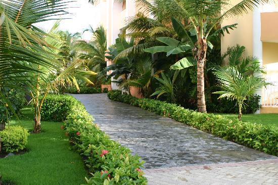 Luxury Bahia Principe Ambar Blue Don Pablo Collection : superbe végétation