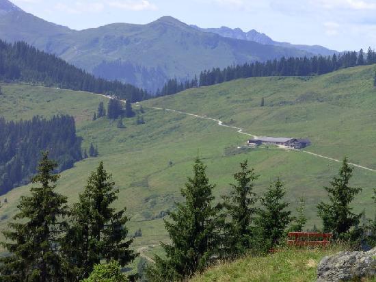 Hotel Pension Unterbrau: Holzalm mit eigener Käserei und hervorragenden Milchprodukten