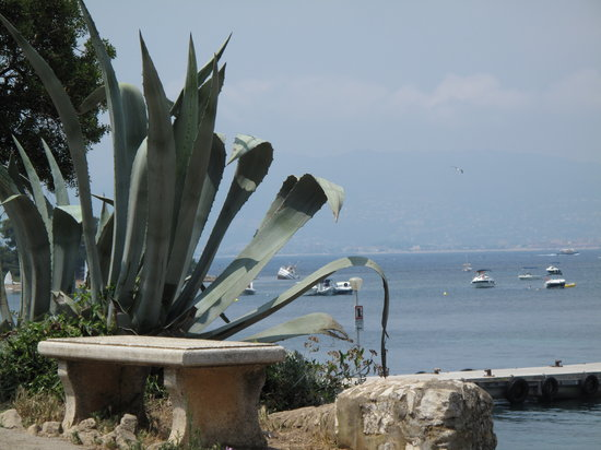 Cannes, Prancis: views
