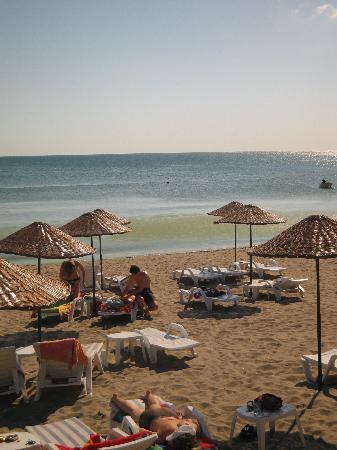 Blue World Hotel: het strand