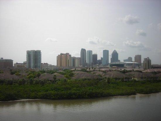 Tampa, Florida 2008