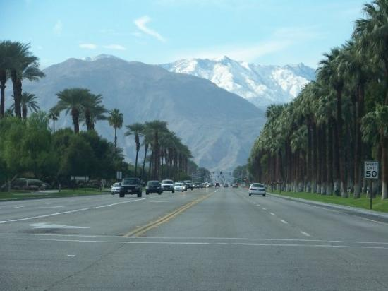 Indio, Californien: Somewhere in the Palm Desert area....Check out those mountains and palm trees!!!