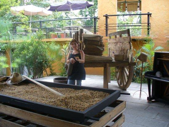 Hotel Zimpizahua: Vale la pena darse una vuelta por el museo del café en Coatepec, Veracruz