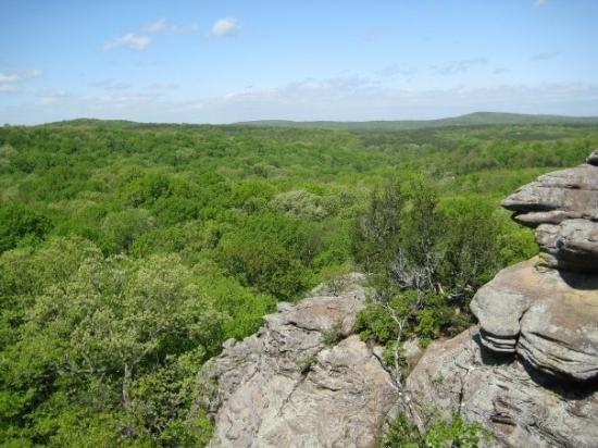 Another view of the Shawnee National Forest @ Garden of the Gods