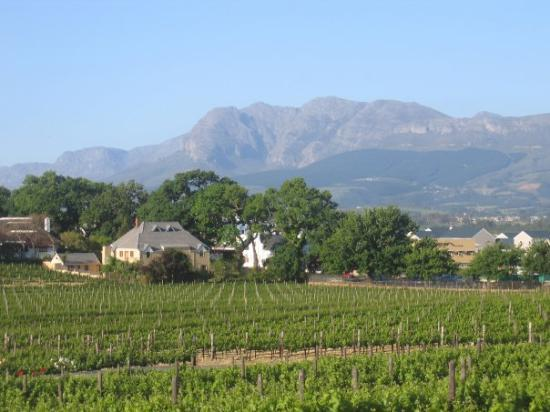 Paarl, Südafrika: I left  piece of my heart to South-Africa.