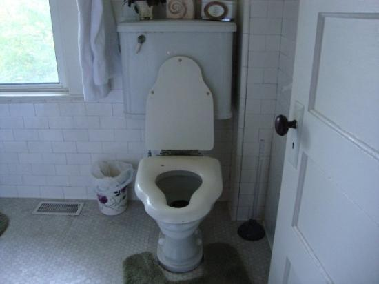 Old fashioned toilet seats 15