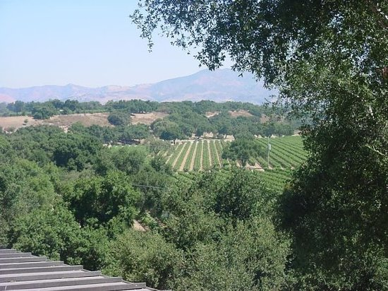 Santa Ynez, Californië: Wine Tour, Santa Ynes Valley, CA.