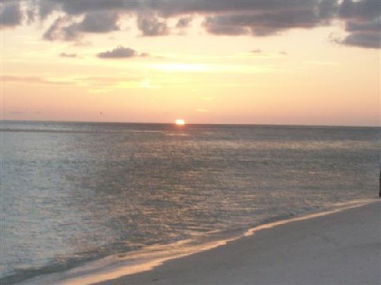 A Palm Breeze Island Rentals