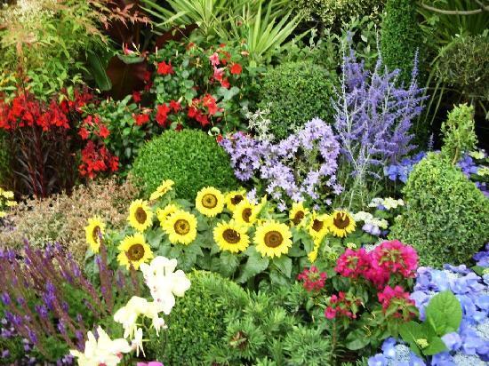 the best gardens!!! - Picture of Portishead, Somerset - TripAdvisor