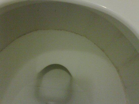 Motel 6 Ellensburg : Toilet