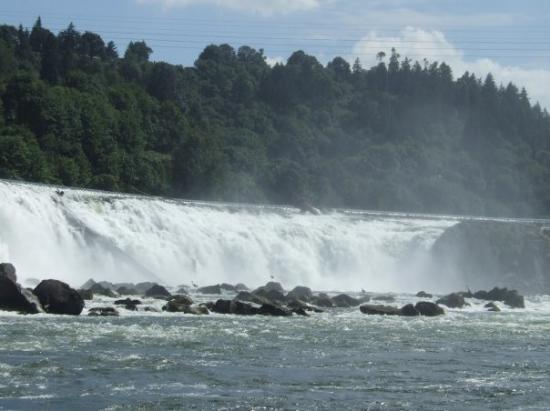 Oregon City, OR: Willamette Falls - so beautiful...