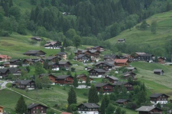 Shot of Grindelwald valley from our apartment.
