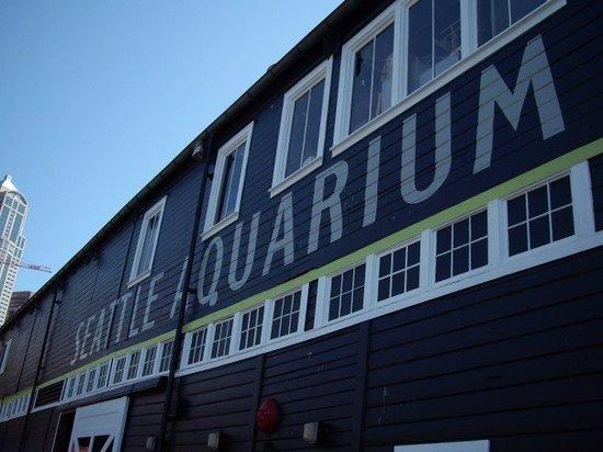 Seattle Aquarium: Aquarium is right next to the Harbor