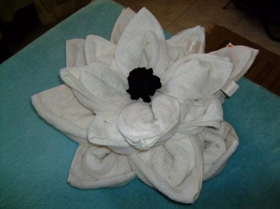 Coral Coast Hotel: Flower Towel Creation