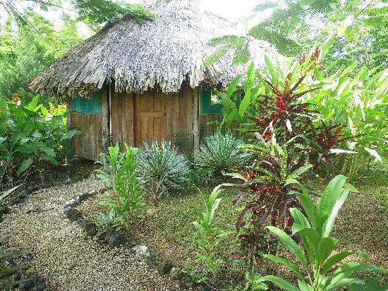 Sun Creek Lodge : a room at suncreek
