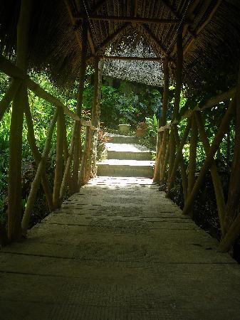 Sun Creek Lodge : bridge over suncreek