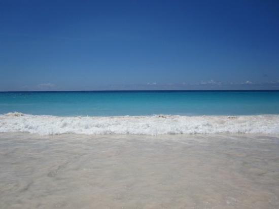 Southampton Parish, Bermuda: Horseshoe bay beach...pink sand and awesome views.