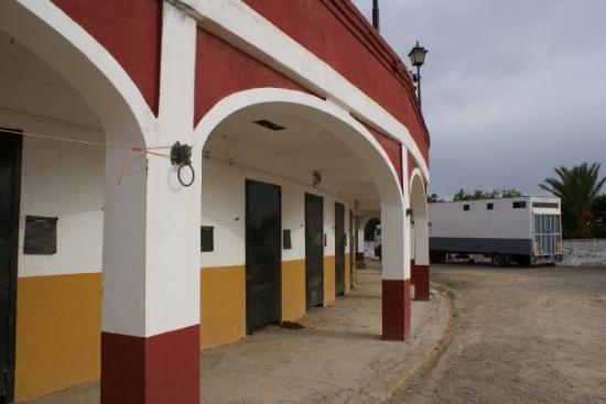 Hotel El Pilar: Les arenes avec dessous les Box.