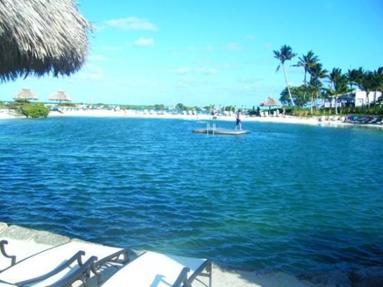 Hawks Cay Resort: the salt water pool