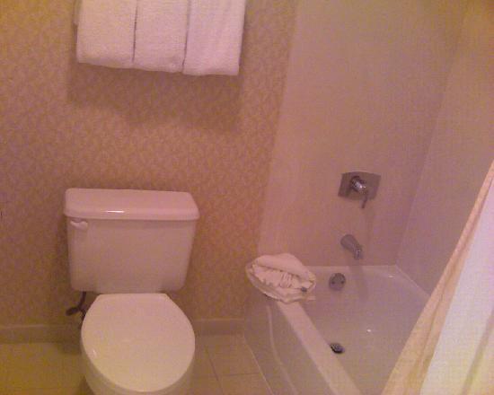 Hawthorn Suites by Wyndham St. Louis Westport Plaza: bathroom