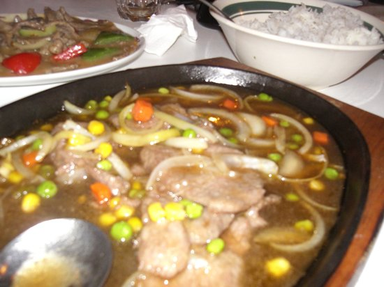 China City Licensed BYO Restaurant: not autjhetic chinese