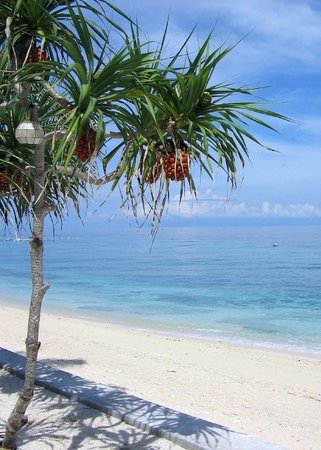 Panglao Island Photo