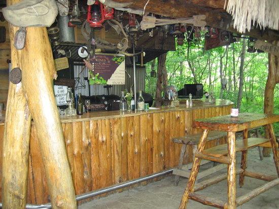 Pollywogg Holler Eco-Resort: Outdoor wine bar